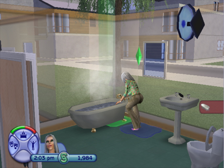 File:TS2 Direct3D Censor 2.png