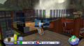 TS2P Wii Direct3D Censor 1.png