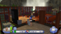 TS2P Wii OpenGL Censor.png